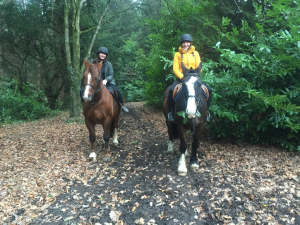 BLOG-Horseriding-at-Castle-Leslie-for-Live-It-Experience-It